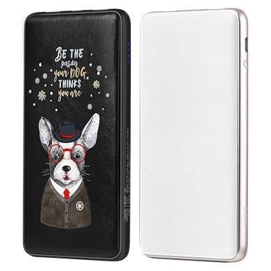 Внешний АКБ 10000 mAh HOCO J13 Adorable puppy series mobile Beauty